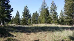 Lot 26 High Mountain View, Florence, MT 59833