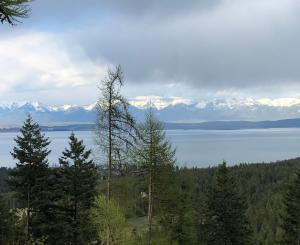 Nhn Blacktail Heights Road, Tract 2ab, Lakeside, MT 59922