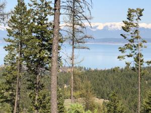 Nhn Blacktail Heights Road, Tract 2aa, Lakeside, MT 59922