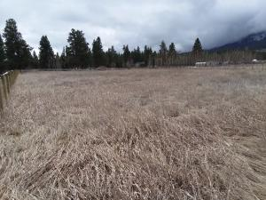 Lot 4 592 Sun Valley Road, Florence, MT 59833