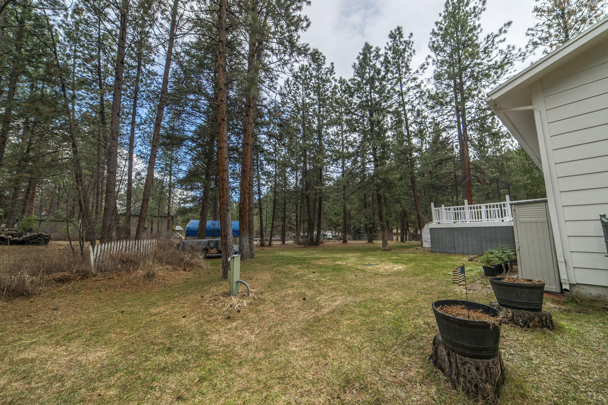 Property Image #41 for MLS #21902287