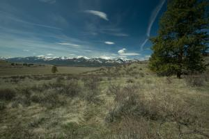 Tract 4 Upper Woodchuck, Florence, MT 59833