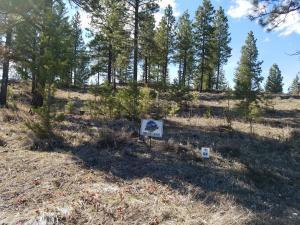 Lot 64 Salmon Drive, Rexford, MT 59930