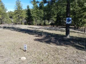 Lot 75 Salmon Drive, Rexford, MT 59930