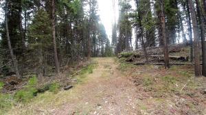 701 Evergreen Drive, Seeley Lake, MT 59868