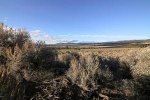 Nhn Picket Pin Trail, Parcel D, Stevensville, MT 59870