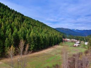 Parcel B Wallace Creek Road, Clinton, MT 59825