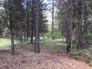 Nka Mt Highway 135, Saint Regis, MT 59866