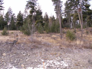 173 Ridge Line Drive, Lakeside, MT 59922