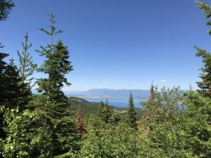 173 Ridge Line Drive, Lakeside, MT 59922