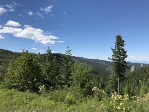 1075 High Point Lane, Lakeside, MT 59922