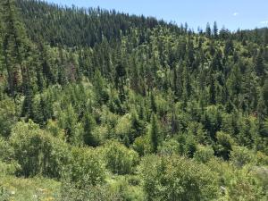 441 Ridge Line Drive, Lakeside, MT 59922