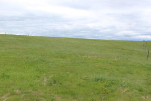Nhn Dry Hill Lane, Frenchtown, MT 59834