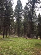 904 Grandview Dr., Seeley Lake, MT 59868