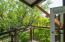 Tree Shaded Balconies