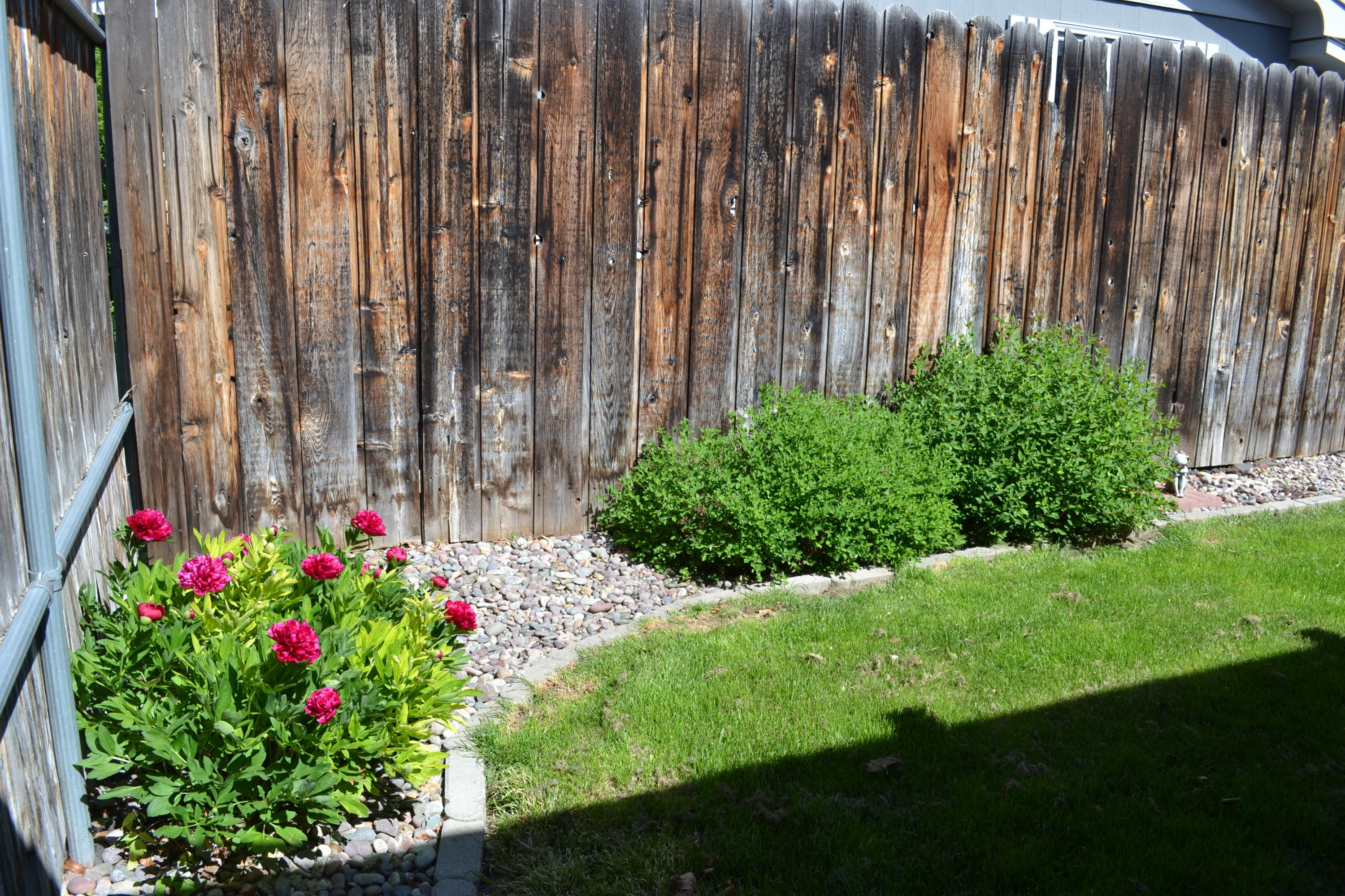 Property Image #26 for MLS #21908890