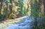 22000 Jocko Canyon Road, Arlee, MT 59821
