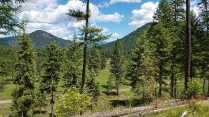 Lot C Old Mill Loop, Saint Regis, MT 59866