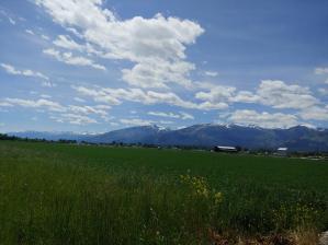 928 Doty Lane, Corvallis, MT 59828
