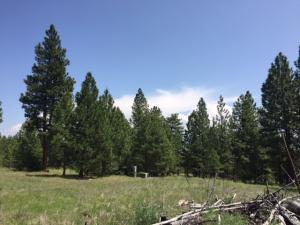 1186 Megan Trail, Victor, MT 59875