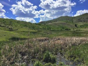 Lot 77 Outlaw Trail Aspen Hills, Anaconda, MT 59711