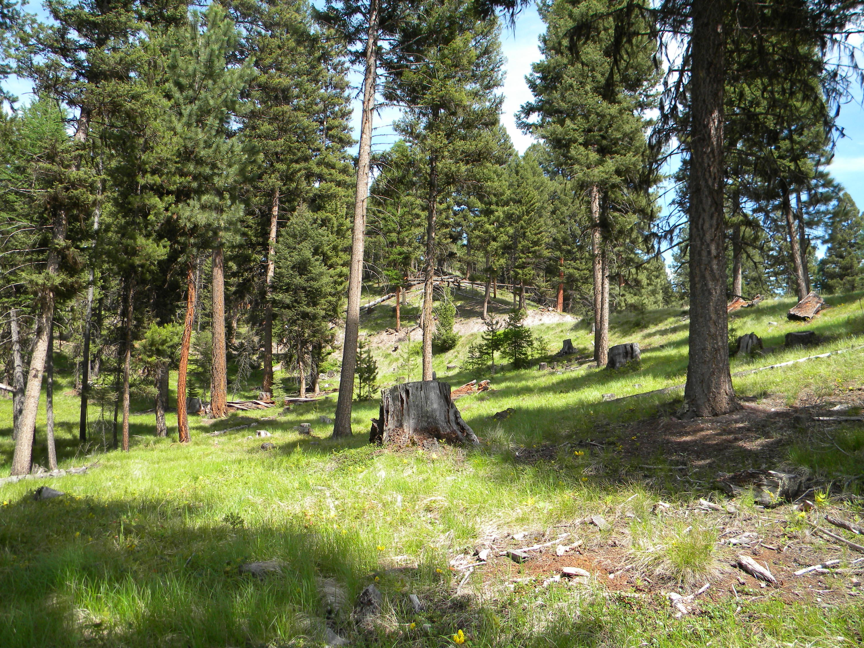 Property Image #3 for MLS #21814389