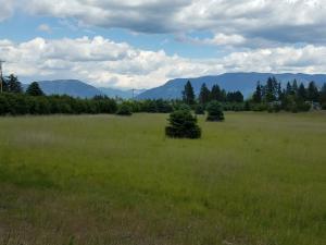 1112 Hodgson Road, Parcel C, Columbia Falls, MT 59912
