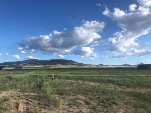 2119 Spring Wheat Loop, East Helena, MT 59635