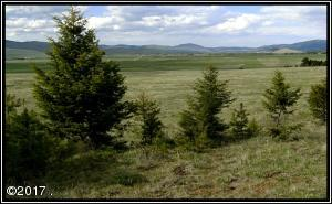 Lot 8 Arrowstone Estates, Philipsburg, MT 59858