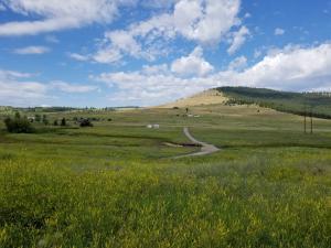 29170 Walking Horse Lane, Big Arm, MT 59910