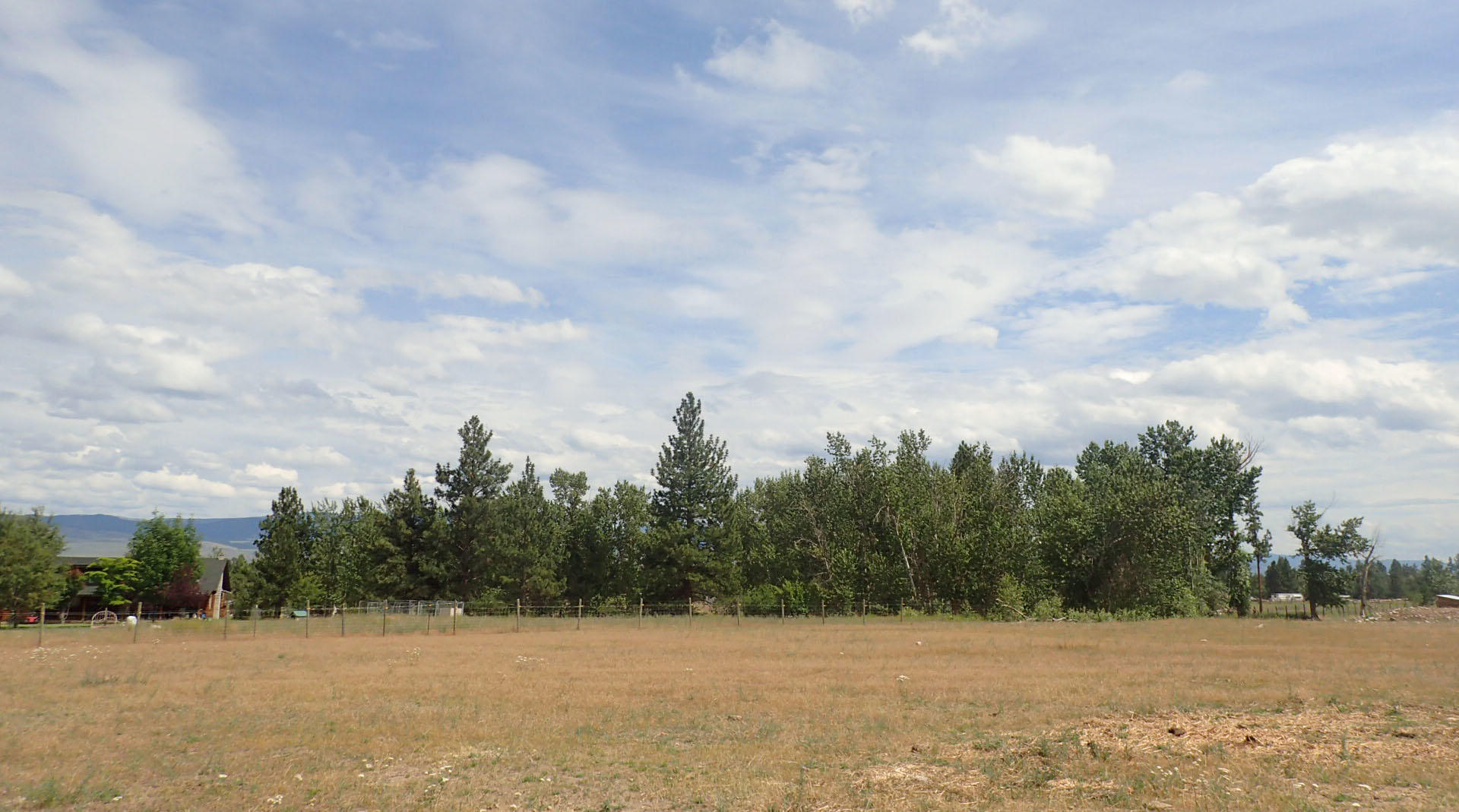 Property Image #16 for MLS #21911987