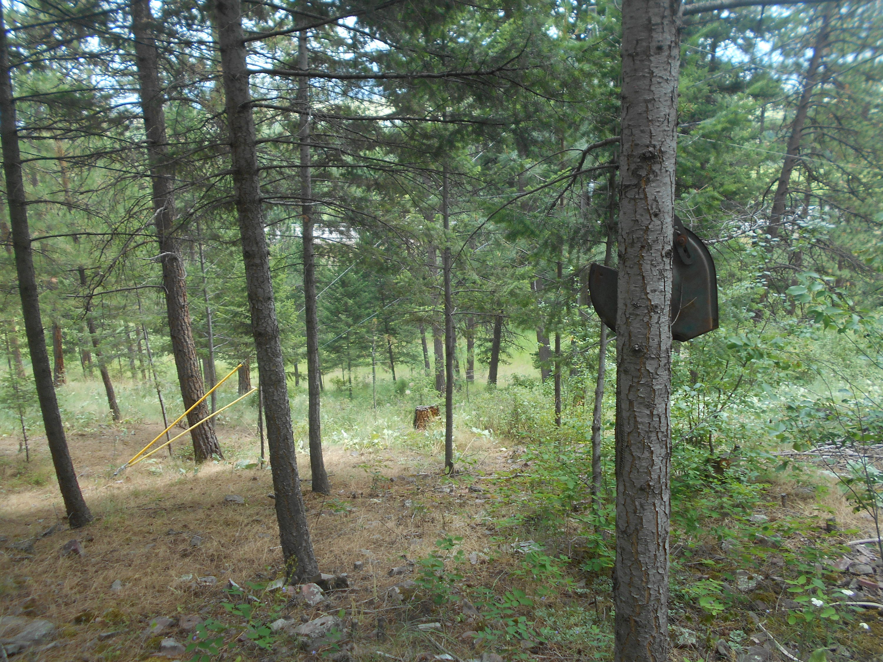 Property Image #4 for MLS #21912419