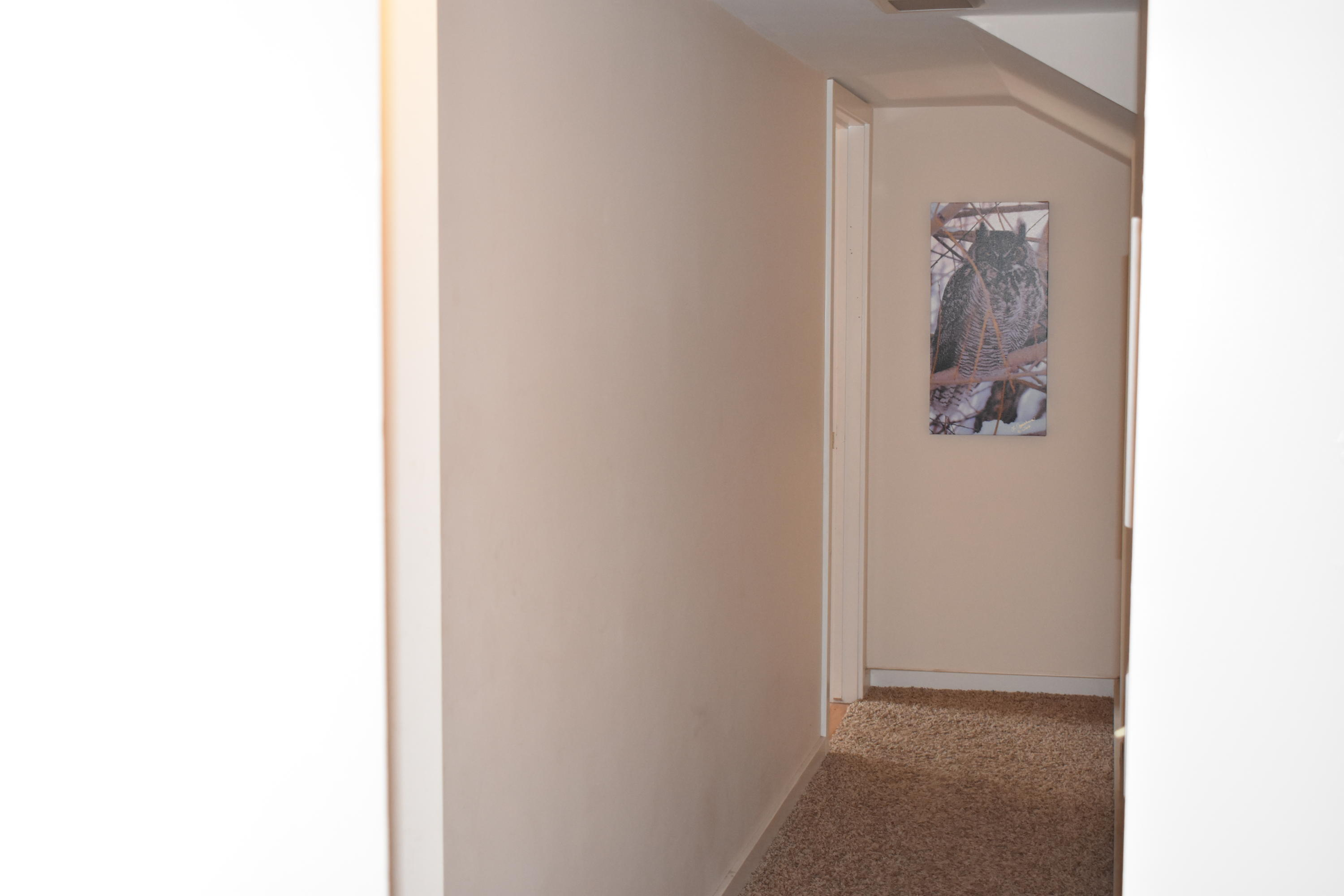 Property Image #35 for MLS #21912076