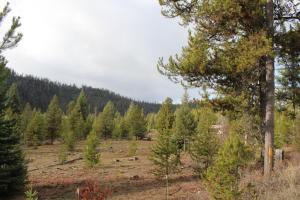 Parcel 23 Twin Creek Road, De Borgia, MT 59830