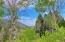 300 Forest Service Road, Anaconda, MT 59711