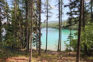 3991 Ashley Lake Road, Kalispell, MT 59901