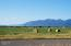 136 Goose Lane, Kalispell, MT 59901