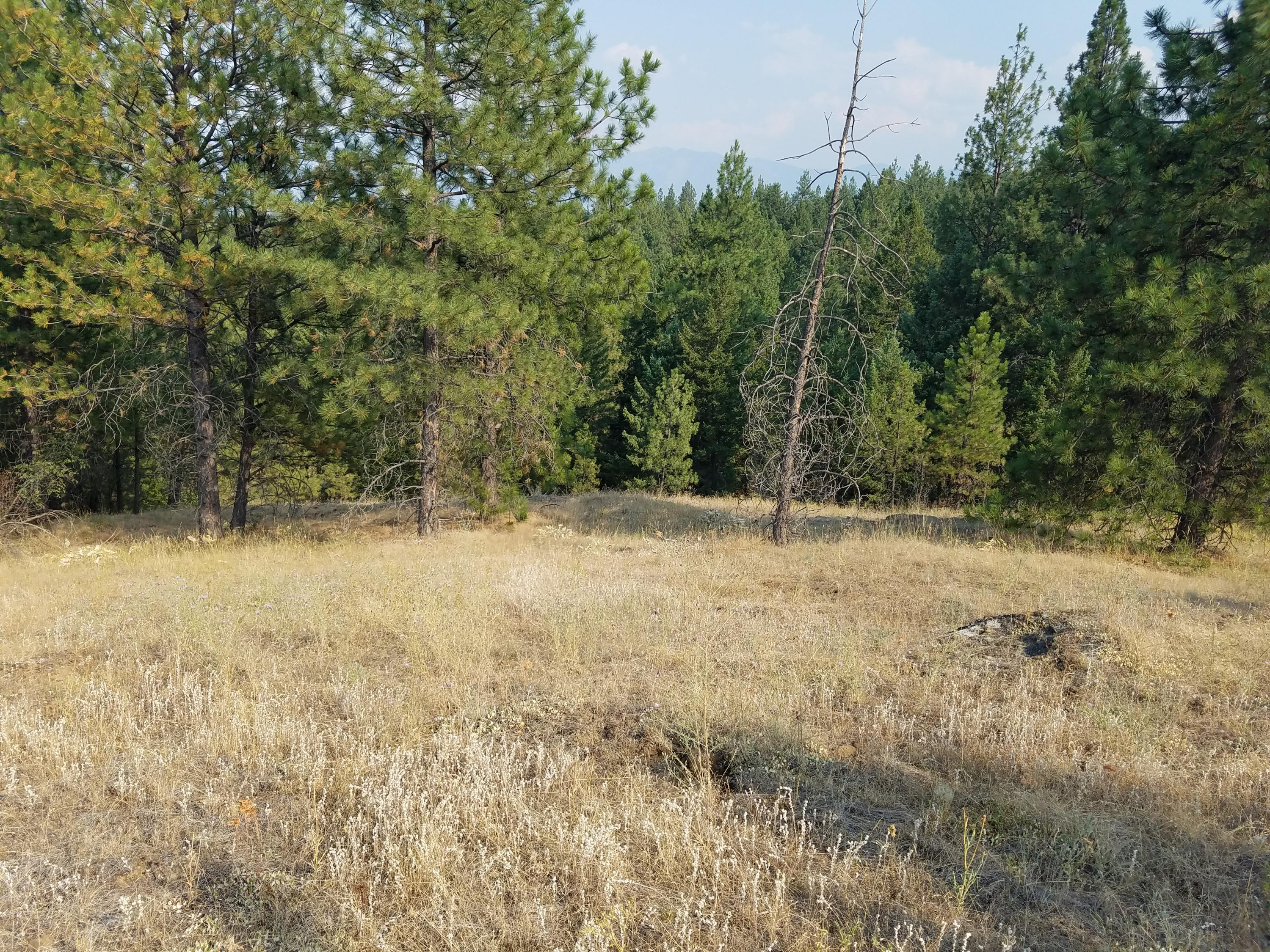 Property Image #9 for MLS #21913274