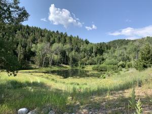 , Anaconda, Montana 59711
