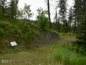 178 Bear Hollow Drive, Bigfork, MT 59911