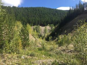 Nhn Snowshoe Pass Road, Superior, MT 59872