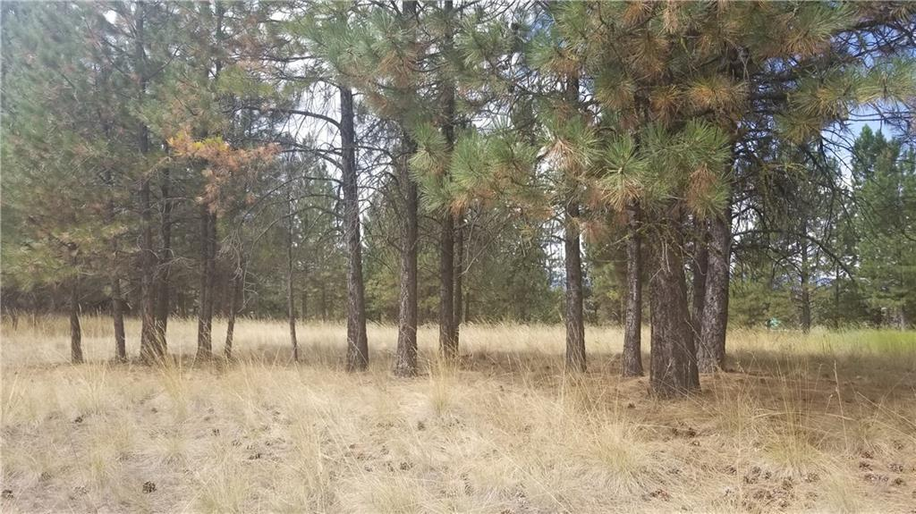 Property Image #3 for MLS #21914828