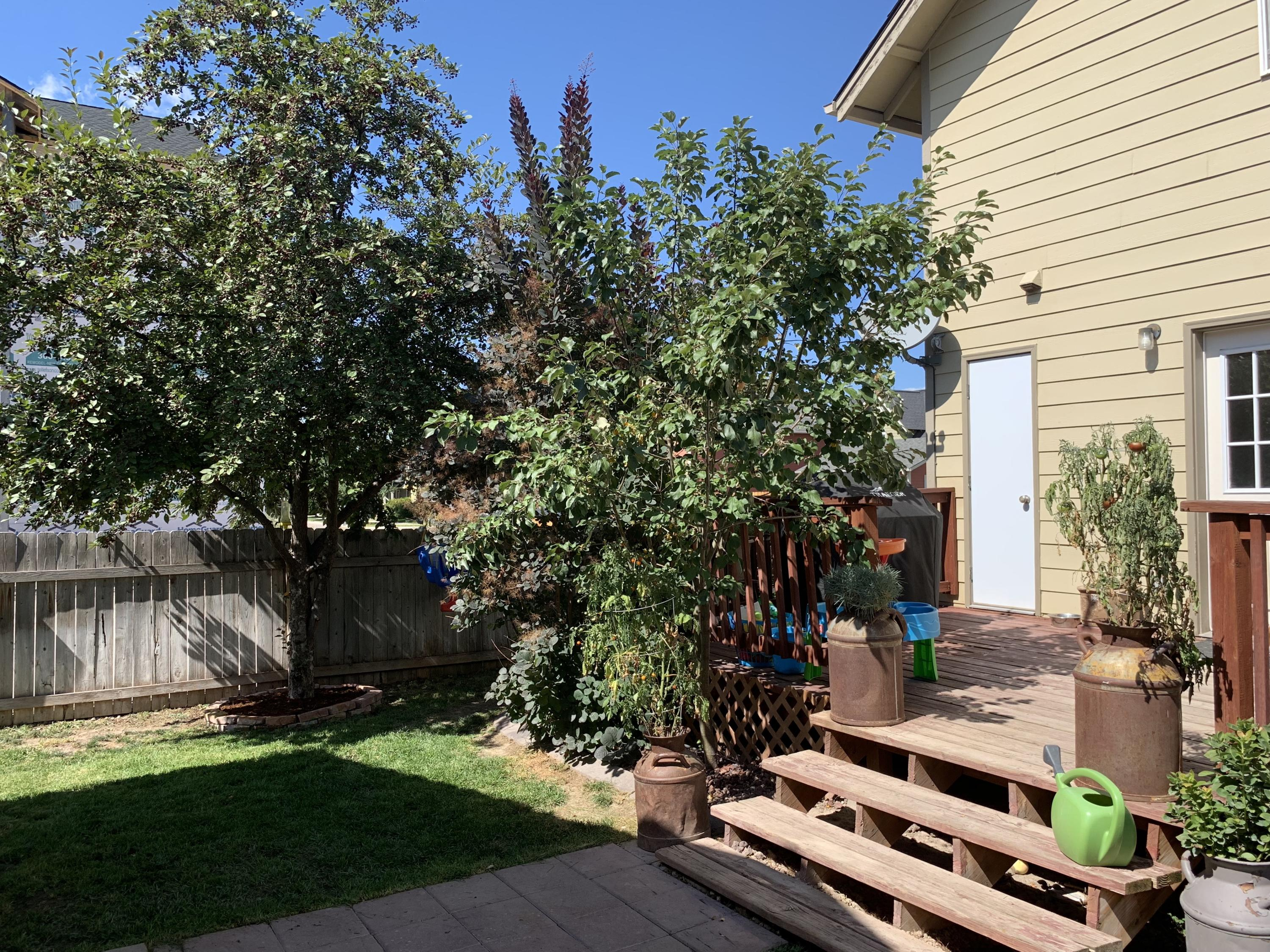 Property Image #5 for MLS #21914961