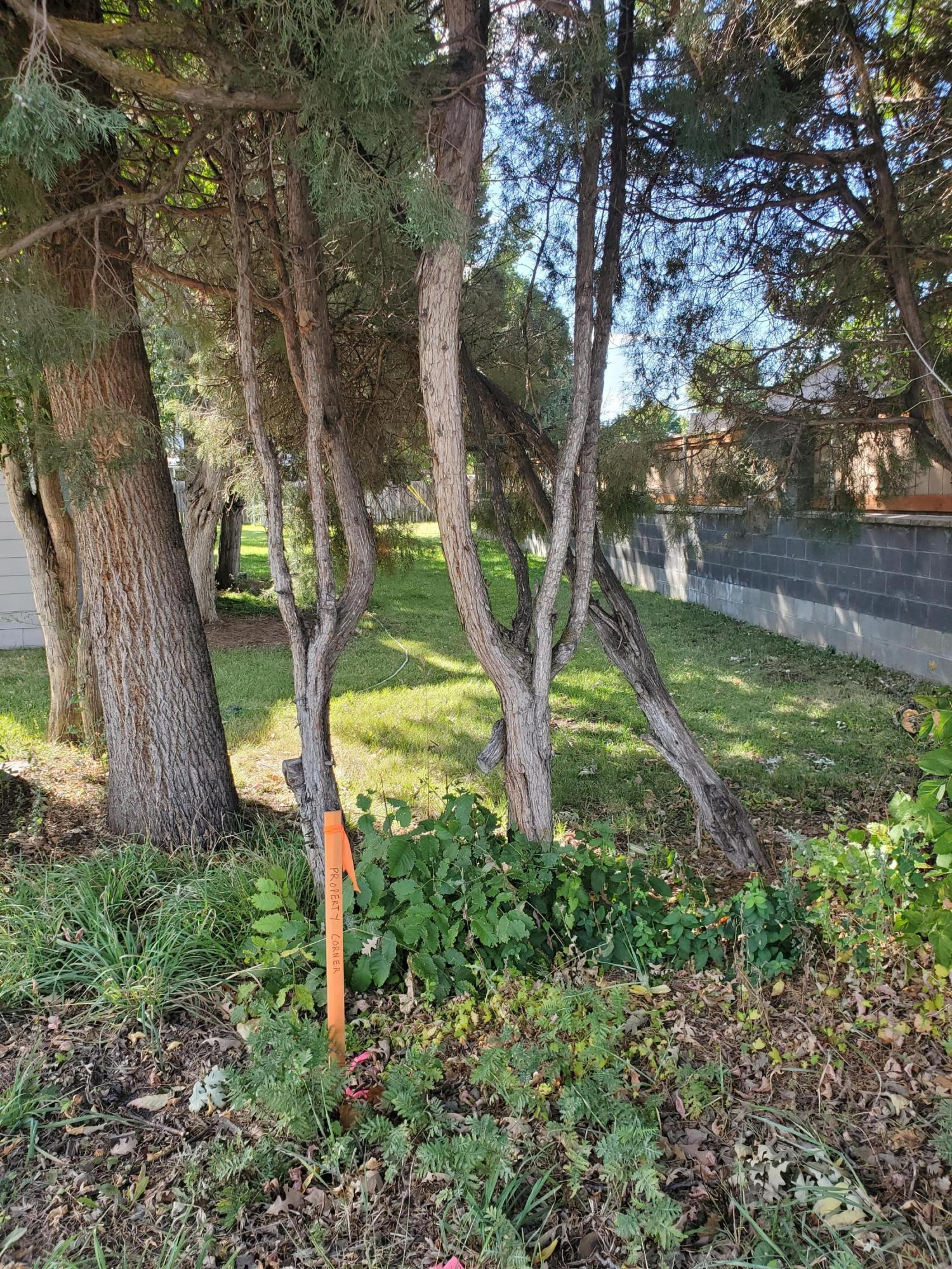 Property Image #3 for MLS #21915647
