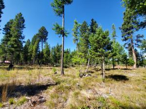 250 Moose Lane, Seeley Lake, MT 59868