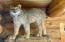 Montana Lynx included