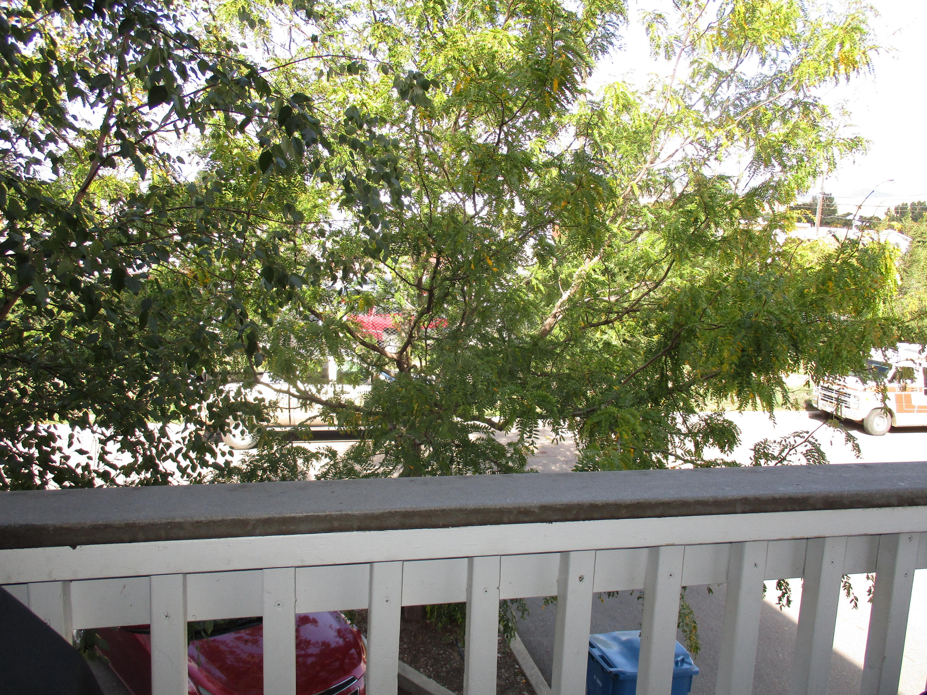Property Image #13 for MLS #21916164