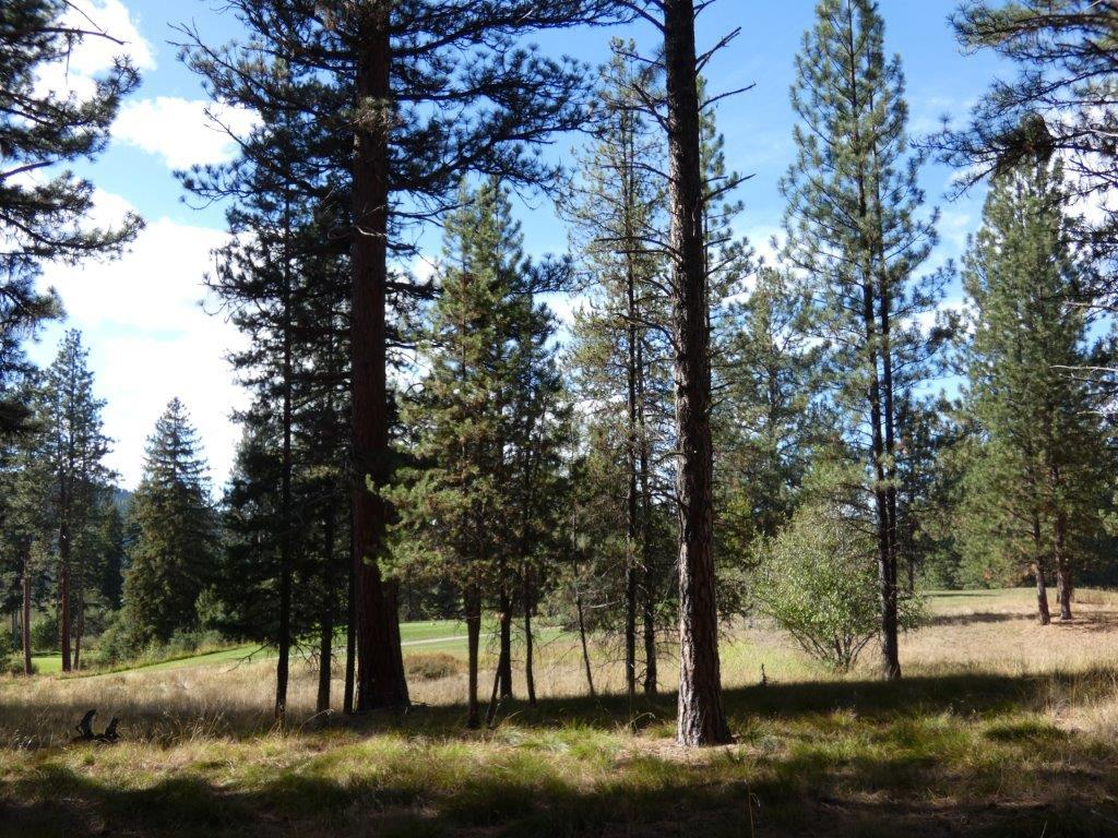 Property Image #1 for MLS #21916499