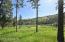 Tbd Sacajawea Way, Sula, MT 59871