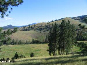 Nhn Deemer Creek Road, Plains, MT 59859